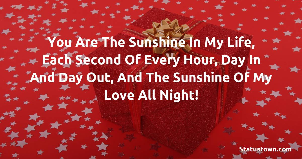 Birthday Wishes for Girlfriend - You are the sunshine in my life, each second of every hour, day in and day out, and the sunshine of my love all night!
