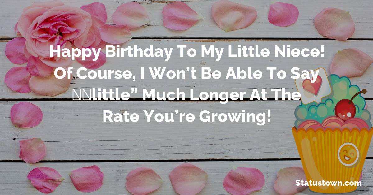 Simple Birthday Wishes for Niece