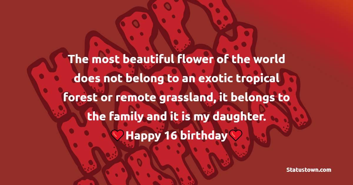 Amazing 16th Birthday Wishes
