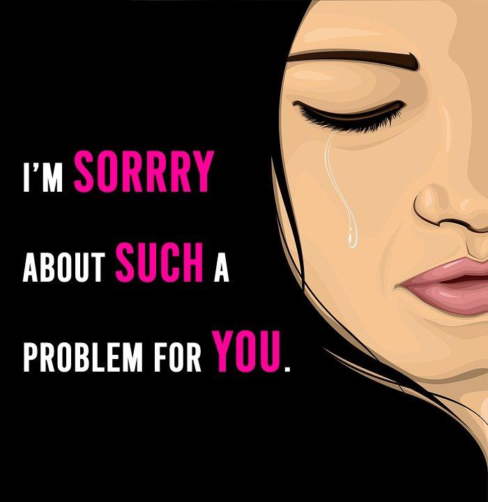 Short apology status