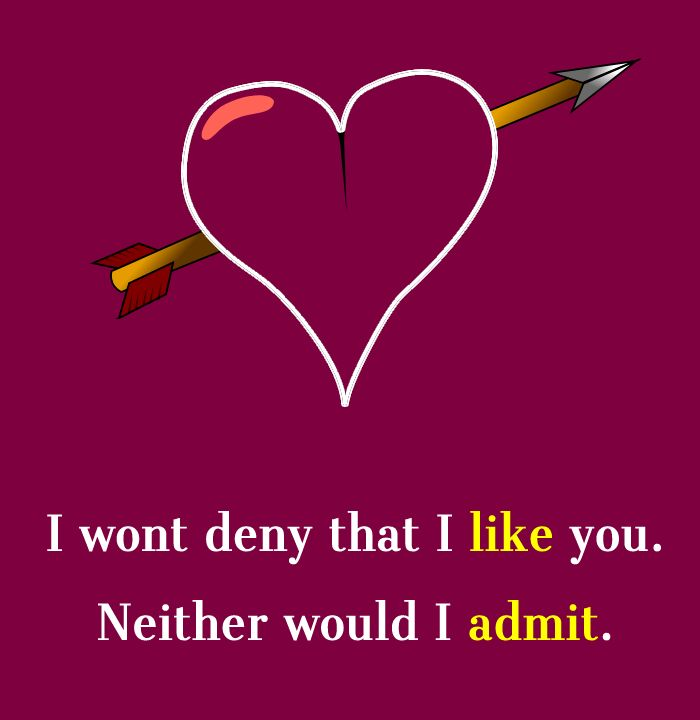 I wont deny that I like you. Neither would I admit.