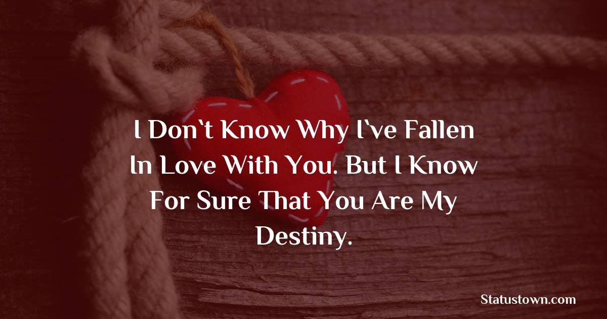 I don`t know why I`ve fallen in love with you. But I know for sure that you are my destiny.
