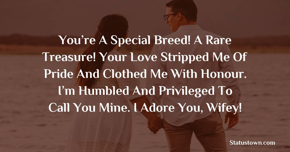 You're a special breed! A rare treasure! Your love stripped me of pride and clothed me with honour. I'm humbled and privileged to call you mine. I adore you, wifey!