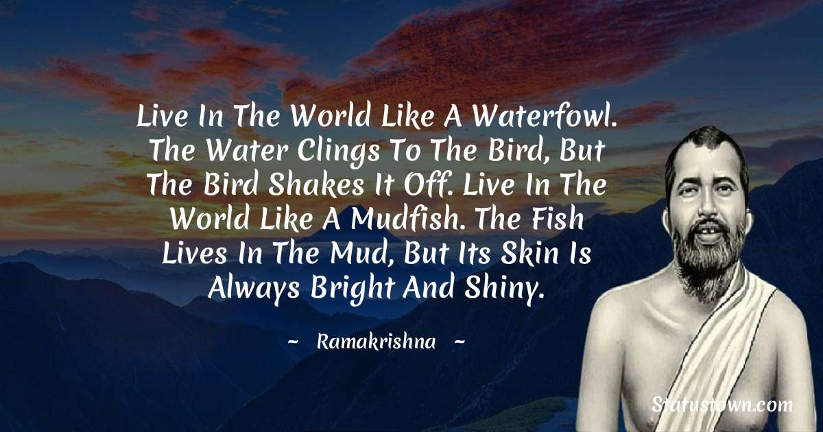 Live in the world like a waterfowl. The water clings to the bird, but the bird shakes it off. Live in the world like a mudfish. The fish lives in the mud, but its skin is always bright and shiny.