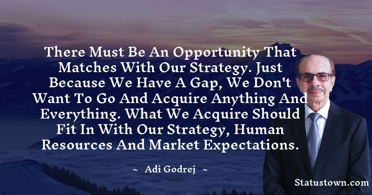 There must be an opportunity that matches with our strategy. Just because we have a gap, we don't want to go and acquire anything and everything. What we acquire should fit in with our strategy, human resources and market expectations.