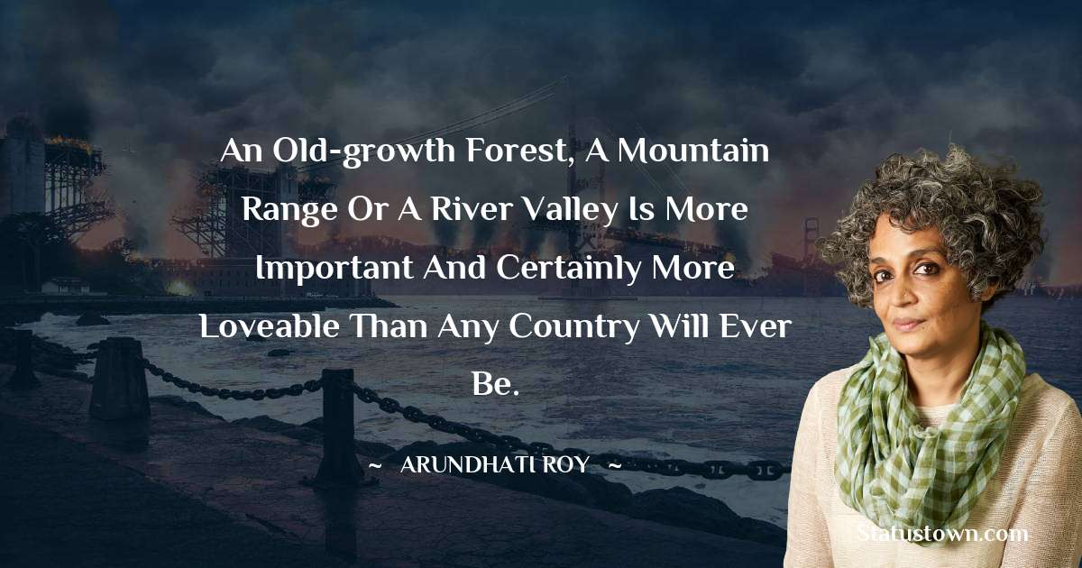 An old-growth forest, a mountain range or a river valley is more important and certainly more loveable than any country will ever be. - Arundhati Roy download