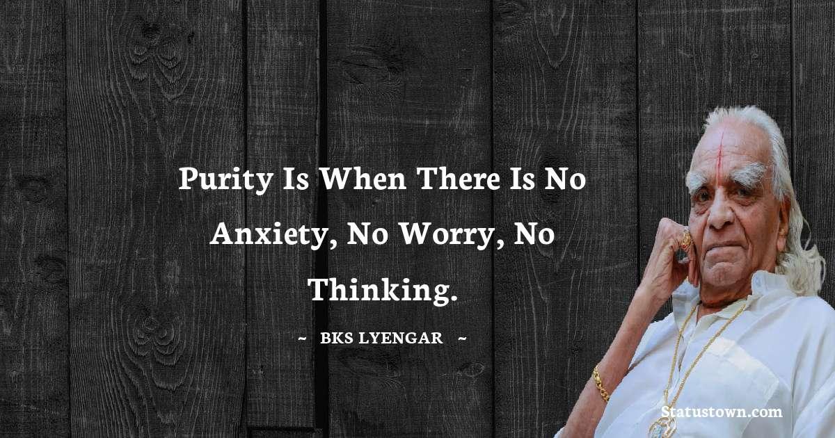 B.K.S. Iyengar Positive Quotes