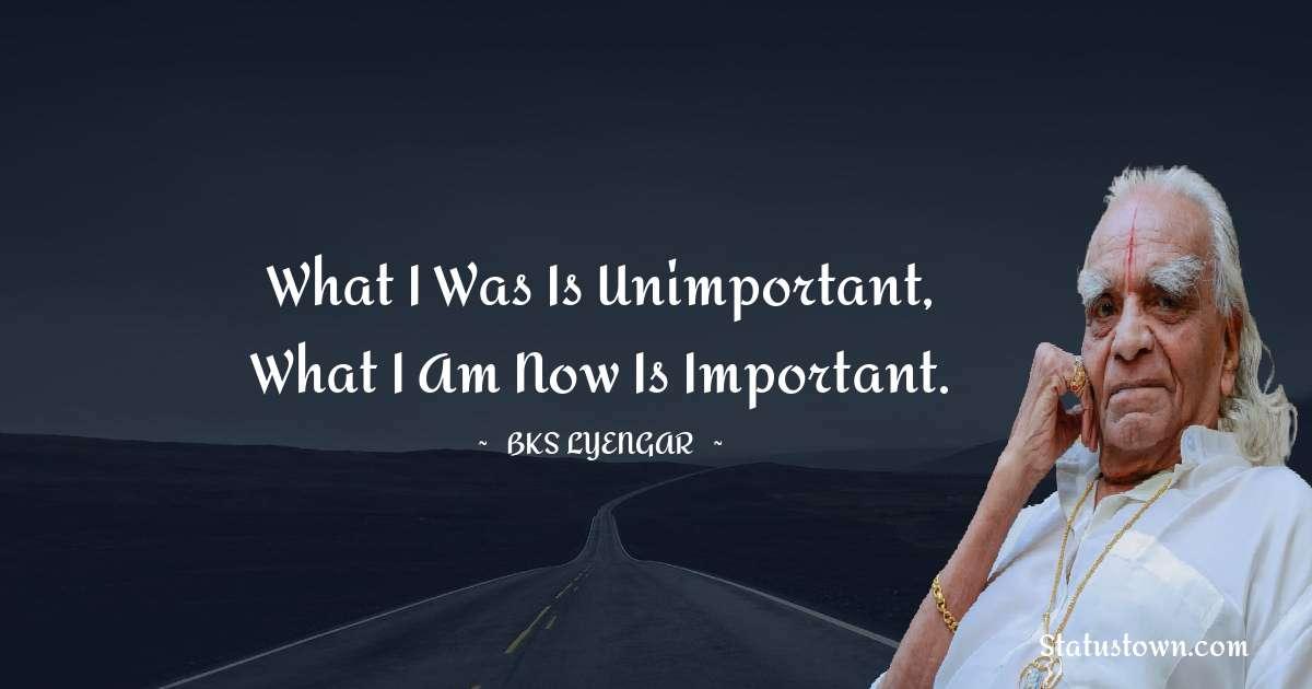 B.K.S. Iyengar Thoughts