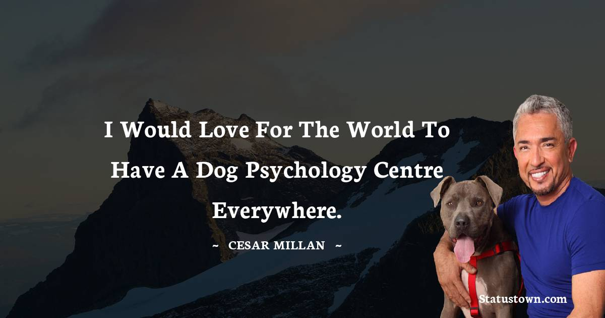 I would love for the world to have a dog psychology centre everywhere.