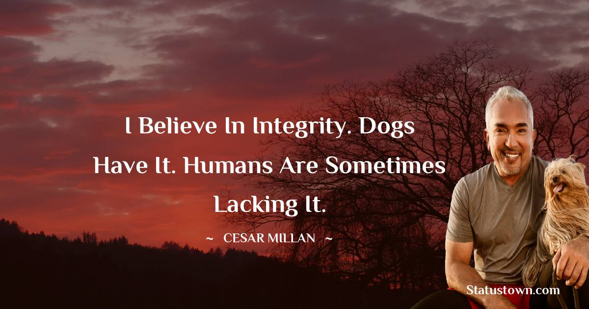 Cesar Millan Positive Thoughts