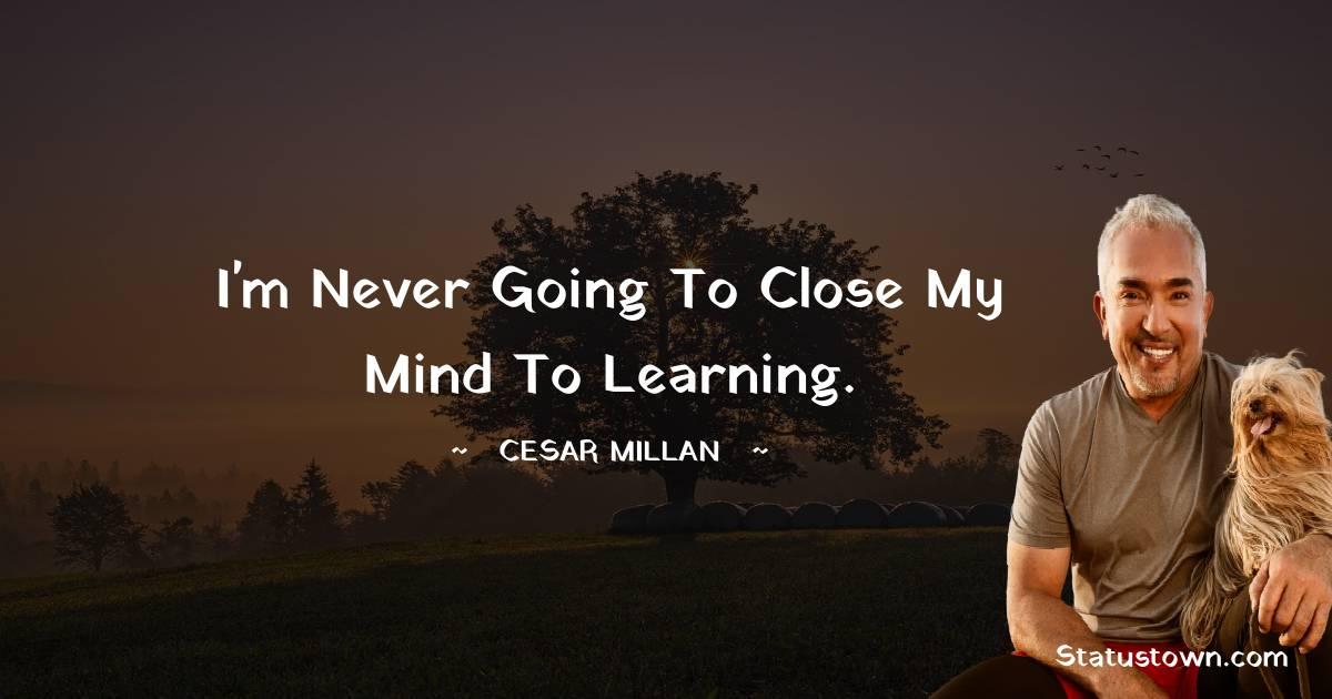 Cesar Millan Positive Quotes