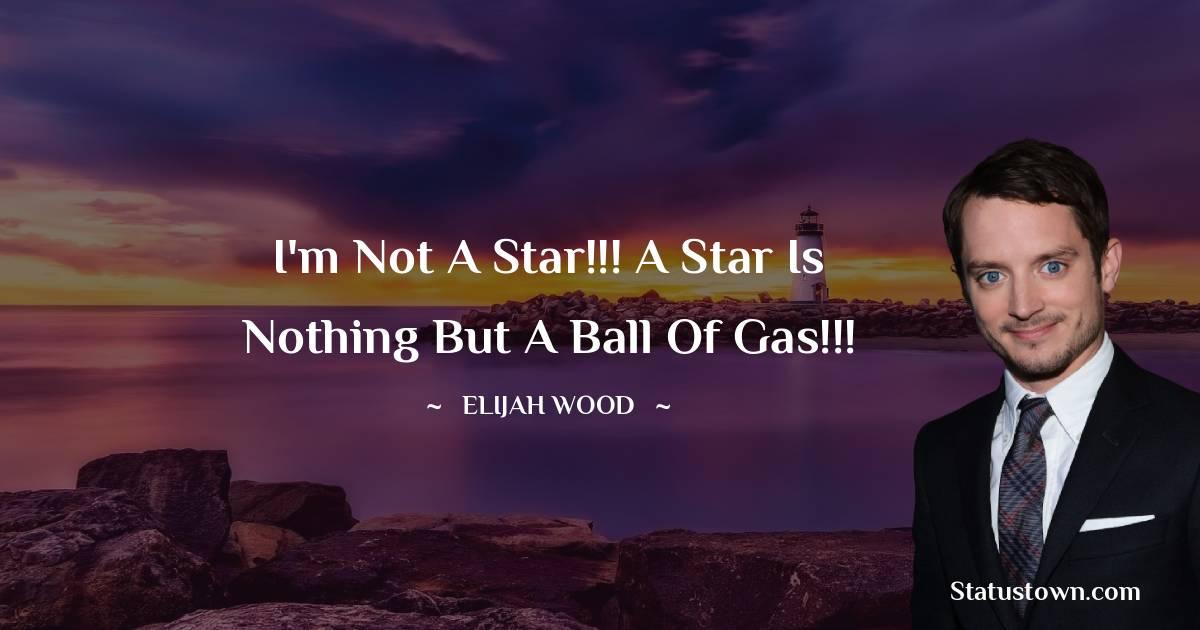 Elijah Wood Short Quotes