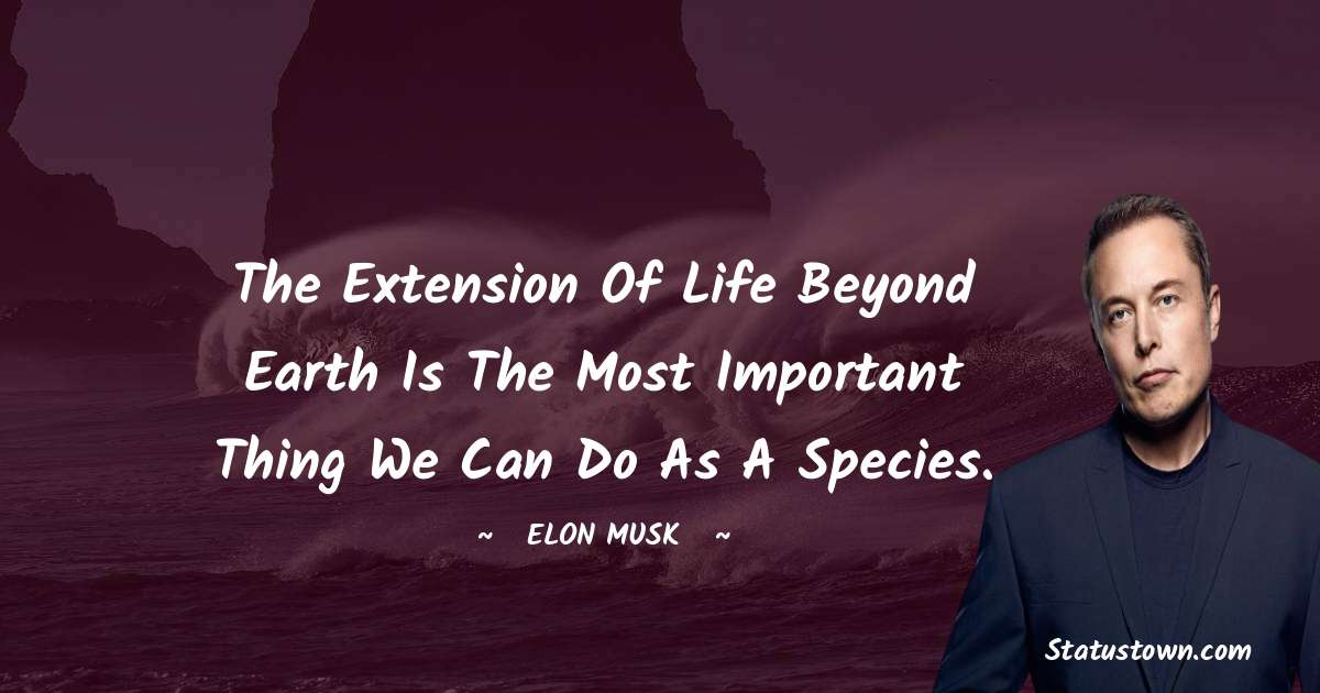 Elon Musk Short Quotes