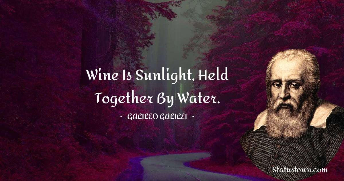 Wine is sunlight, held together by water.