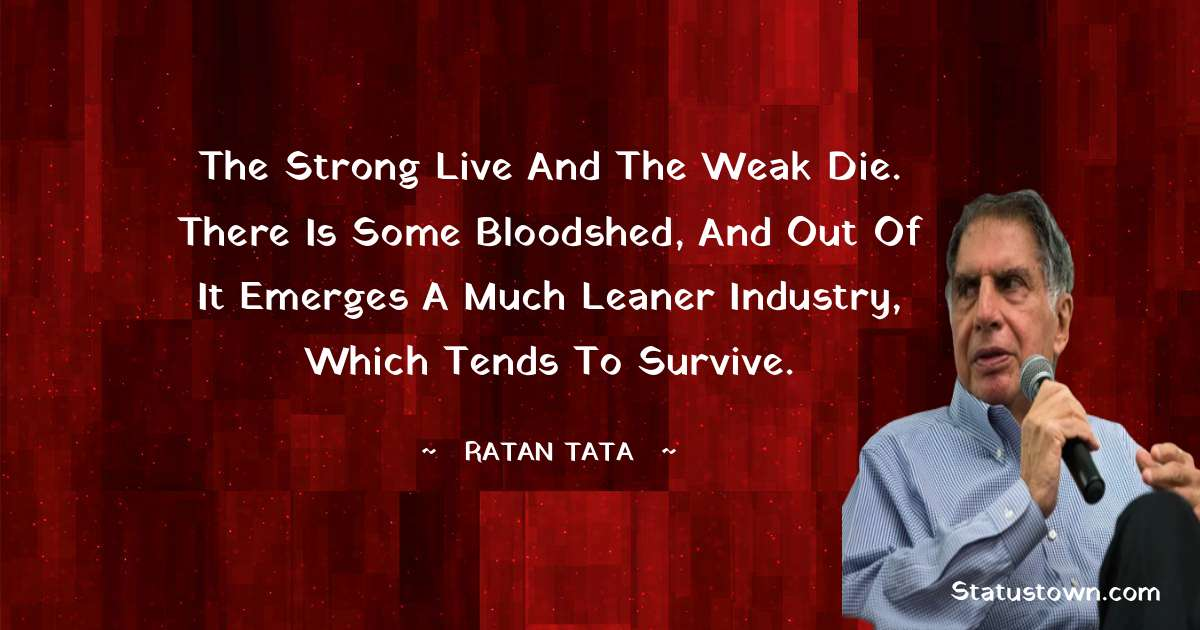 The strong live and the weak die. There is some bloodshed, and out of it emerges a much leaner industry, which tends to survive.
