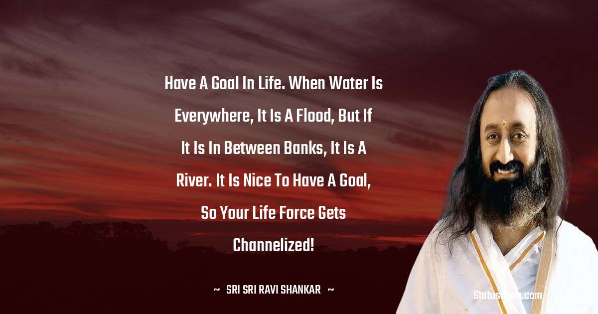 Have a goal in life. When water is everywhere, it is a flood, but if it is in between banks, it is a river. It is nice to have a goal, so your life force gets channelized!