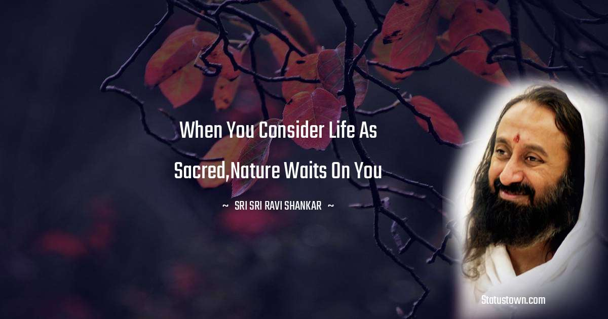When you consider Life as sacred,Nature waits on you