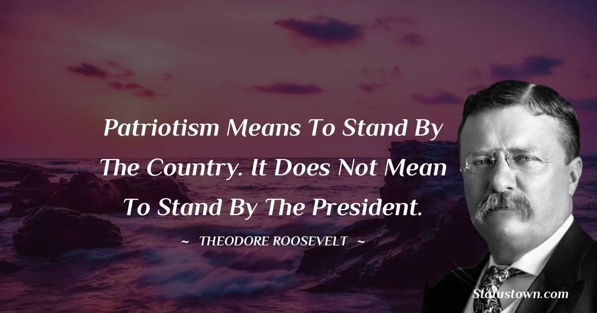 Theodore Roosevelt Unique Quotes